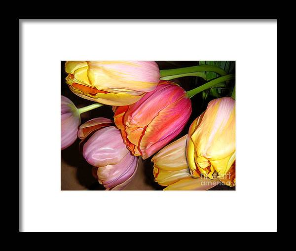 Nature Framed Print featuring the photograph Tulips All Together by Lucyna A M Green