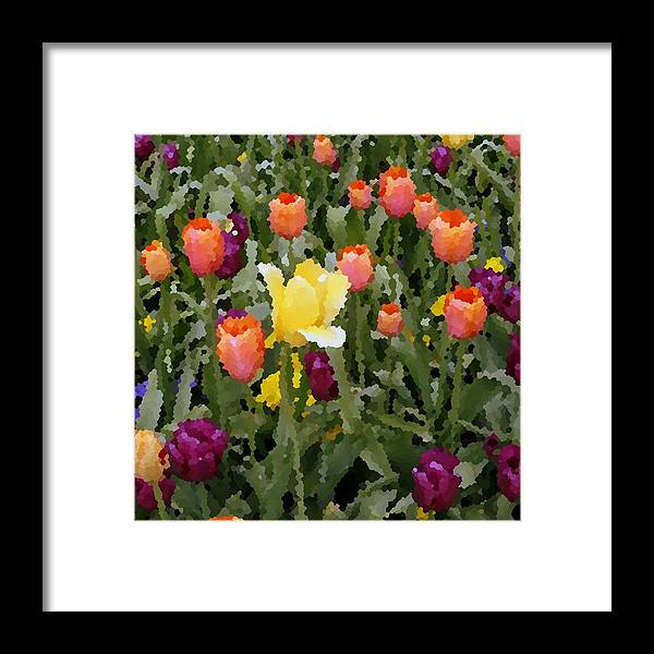 Tulips Framed Print featuring the photograph Tulips by Rodger Mansfield