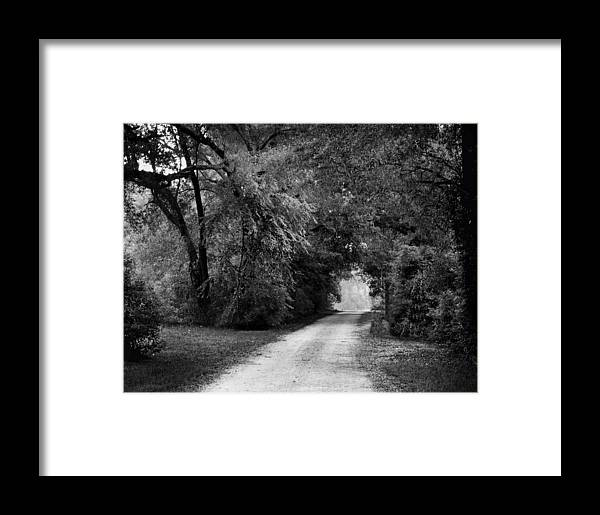 Flowers Framed Print featuring the photograph Tunnel Of Lydia by Michael Thomas