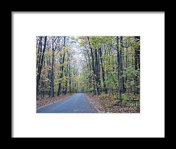 Fall Framed Print featuring the photograph Tunnel Of Trees by Scott Ward