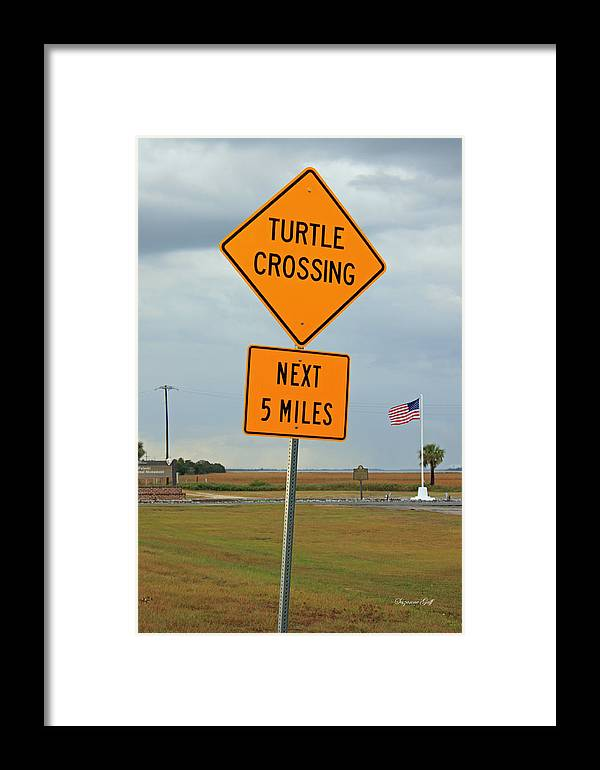 Sign Framed Print featuring the photograph Turtle Crossing by Suzanne Gaff