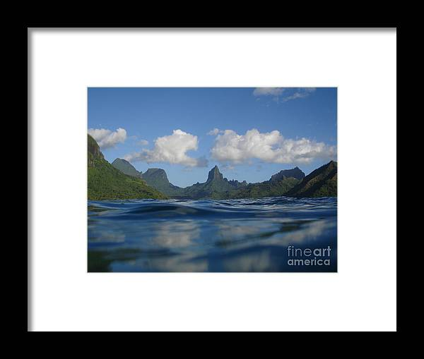 Landscape Framed Print featuring the photograph Turtle View Of Paradise by Chad Natti
