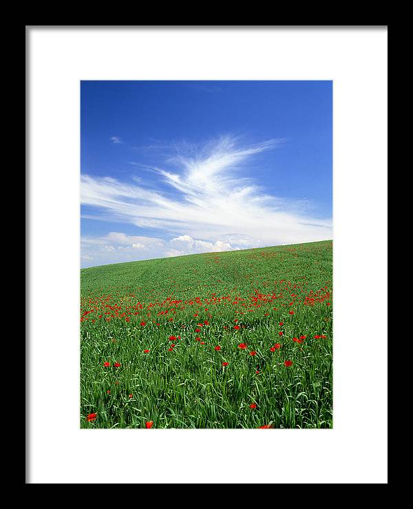 Tuscany Framed Print featuring the photograph Tuscan Clouds by Michael Hudson