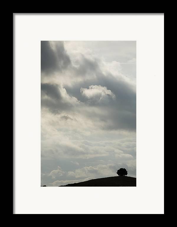 Italy Framed Print featuring the photograph Tuscany by Luigi Barbano BARBANO LLC