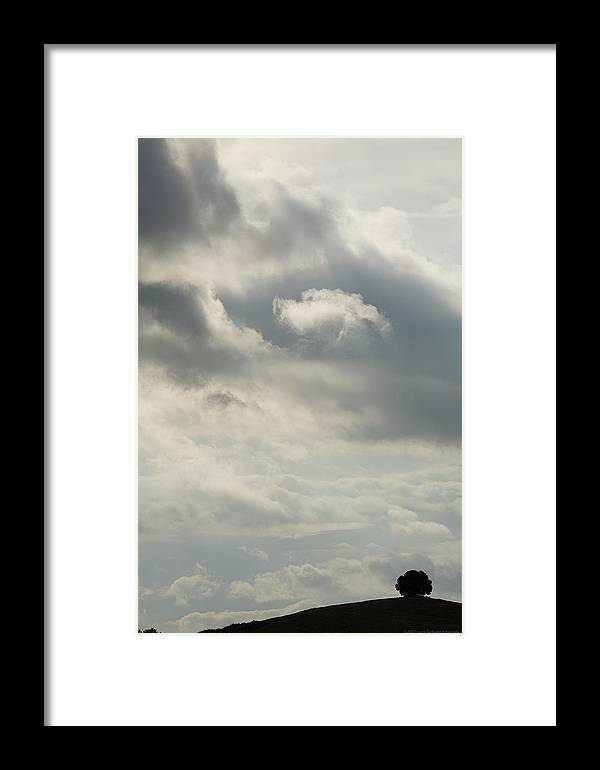 Italy Framed Print featuring the photograph Tuscany by Luigi Barbano BARBANO LLC