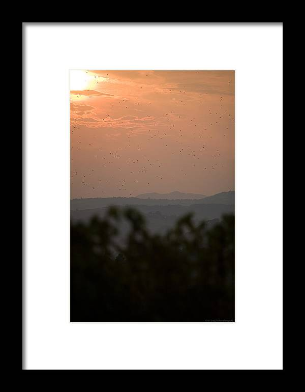 Italy Framed Print featuring the photograph Tuscany Sunset 1 by Luigi Barbano BARBANO LLC