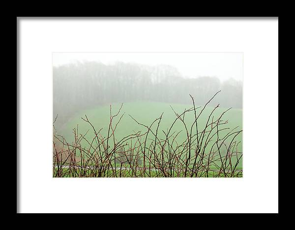 Minimalist Framed Print featuring the photograph Twigs In Mist by Ginger Stein