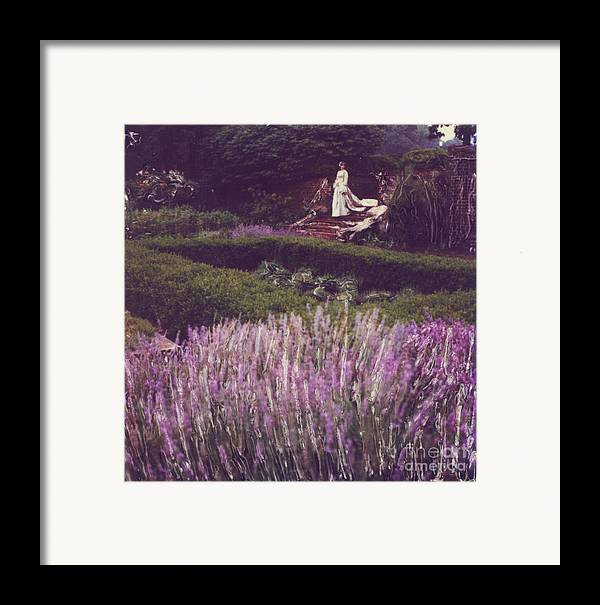 Polaroid Framed Print featuring the photograph Twilight Among The Lavender by Steven Godfrey