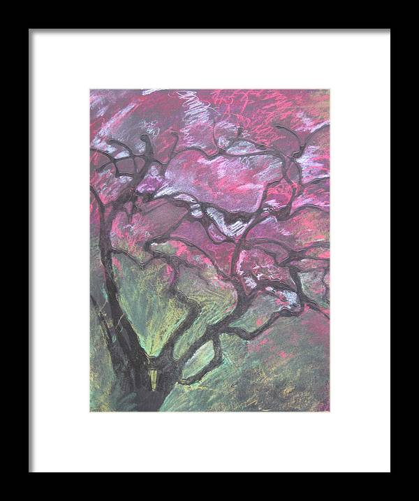 Pastel Framed Print featuring the drawing Twisted Cherry by Leah Tomaino