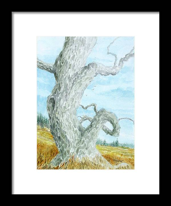 Old Tree Framed Print featuring the painting Twisted Tree by Steve Mountz