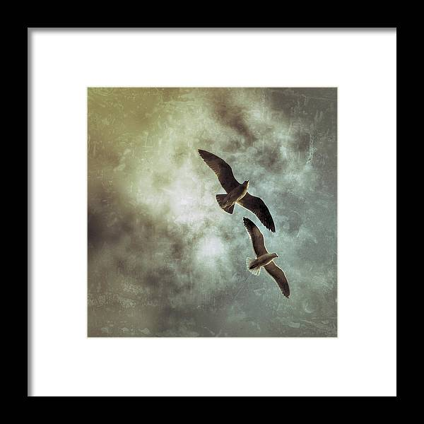 California Framed Print featuring the digital art Two By Two They Flew by Allison Carlysle