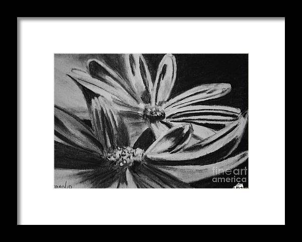 Flowers Framed Print featuring the drawing Two Flowers by Regan J Smith