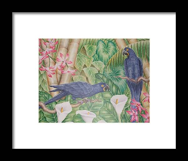 Tropical Landscape Flower Bird Framed Print featuring the drawing Two Macaws by Jubamo