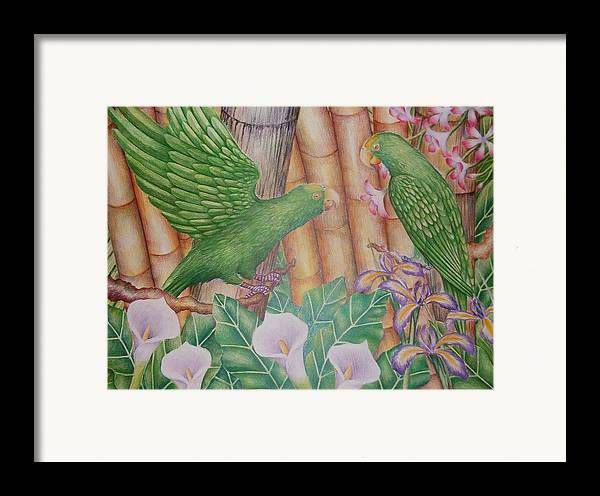 Landscape Framed Print featuring the drawing Two Perrots by Jubamo