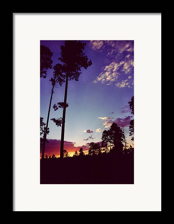 Arizona Sunset Framed Print featuring the photograph Two Pines Sunset by Randy Oberg