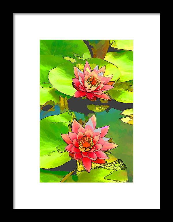 Aquatic Framed Print featuring the painting Two Pink Blooming Water Lilies by Jeelan Clark