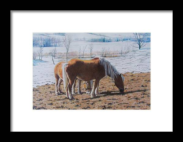 Horses Framed Print featuring the mixed media Two Ponies In The Snow by Constance Drescher