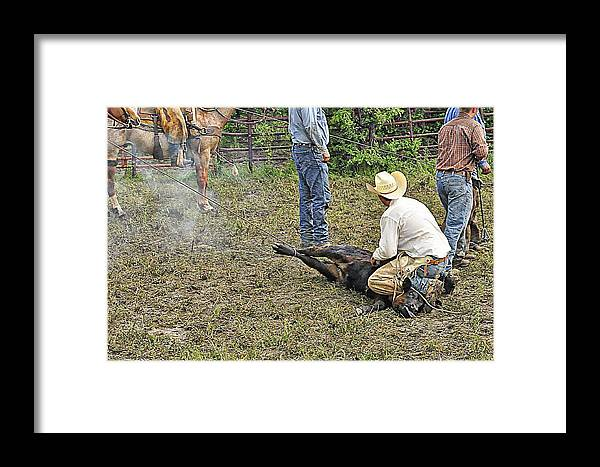 Cowboy Framed Print featuring the photograph Two Ropes Full by Diana Cannon
