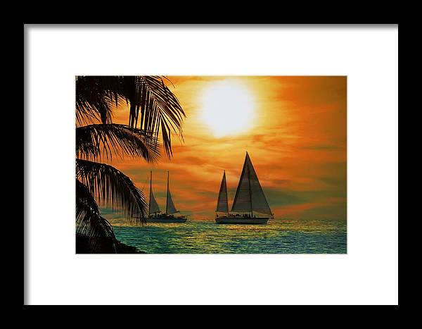 Sail Framed Print featuring the photograph Two Ships Passing In The Night by Bill Cannon
