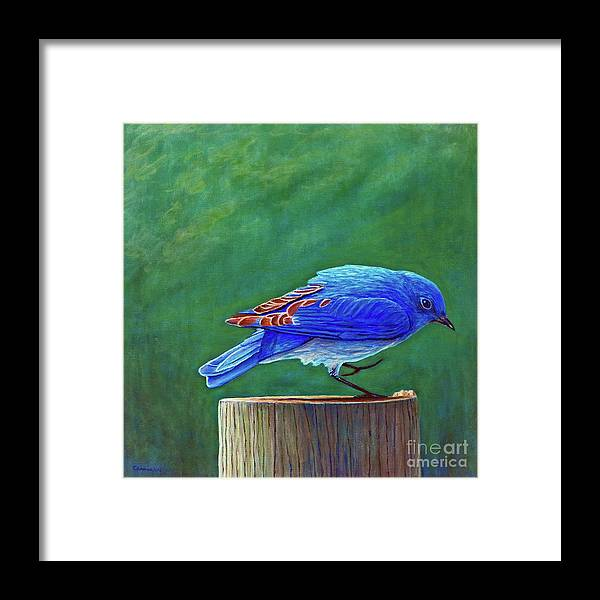 Bluebird Framed Print featuring the painting Two Step by Brian Commerford
