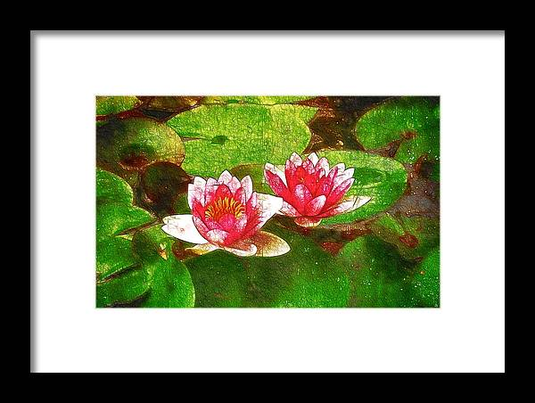 Lotus Reflection Framed Print featuring the painting Two Waterlily Flower by Jeelan Clark