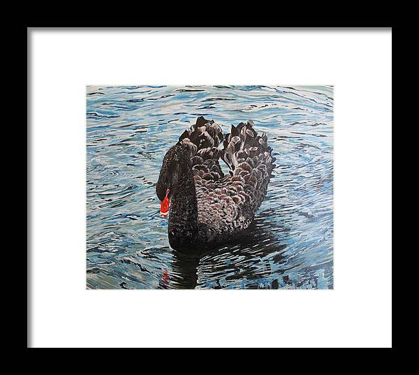 Swan Framed Print featuring the painting Under Full Sail Black Swan by Leonie Bell