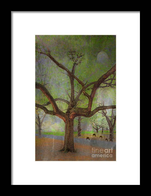 Travel Framed Print featuring the photograph Under The Live Oak by Larry Braun