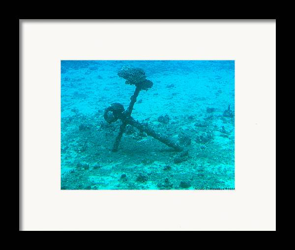 Sea Framed Print featuring the photograph Underwater Anchor by Nicole I Hamilton