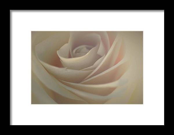 Framed Print featuring the photograph Unique Love by The Art Of Marilyn Ridoutt-Greene