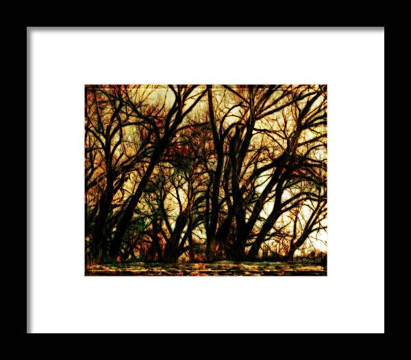 Bare Trees Framed Print featuring the photograph Unquenched Thirst by Mike Braun