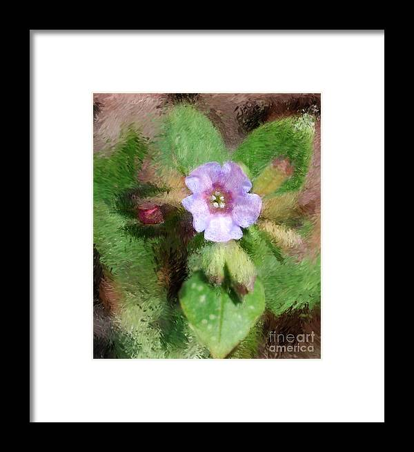Digital Photo Framed Print featuring the photograph Untitled Floral -1 by David Lane