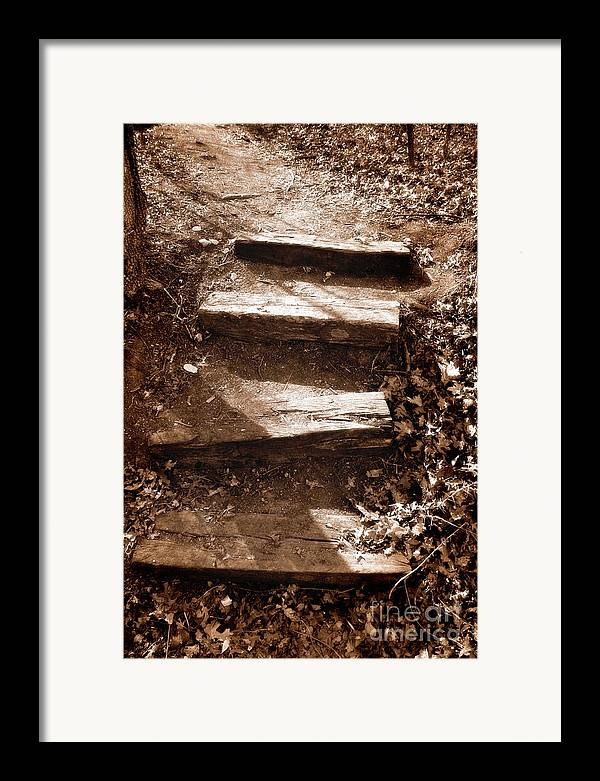 Step Framed Print featuring the photograph Untitled by Jeannie Burleson