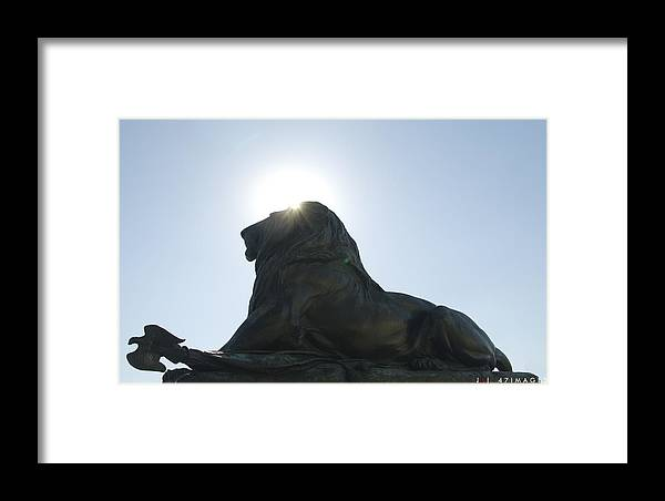 Lion Framed Print featuring the photograph Untitled by Jonathan Keys
