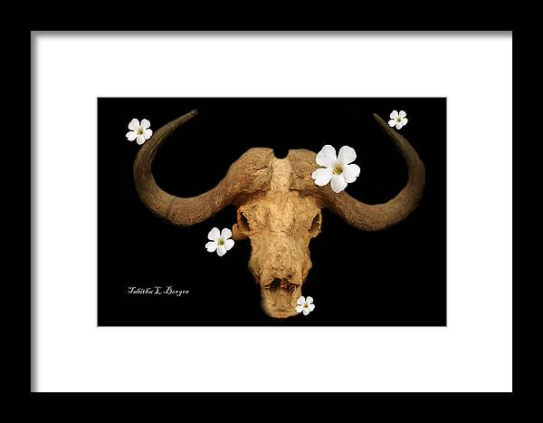 Skull Framed Print featuring the photograph Untitled by Tabitha Borges