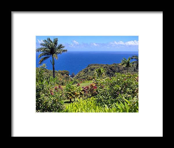 Coast Framed Print featuring the photograph Untouched by Nicole I Hamilton