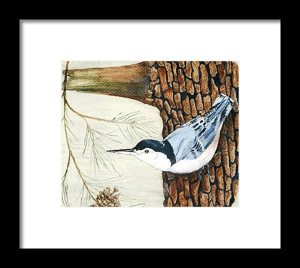 Nuthatch Framed Print featuring the painting Upside Down by Debra Sandstrom