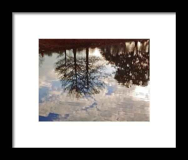 Photography Framed Print featuring the photograph Upside Down - Reflections by Marian Bell