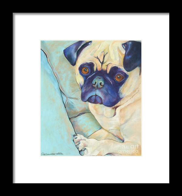 Pug Framed Print featuring the pastel Valentino by Pat Saunders-White
