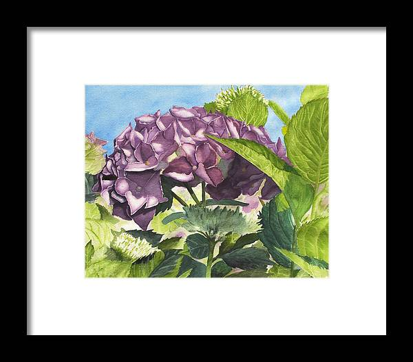 Floral Framed Print featuring the painting Vanessa's Flower by Robert Thomaston