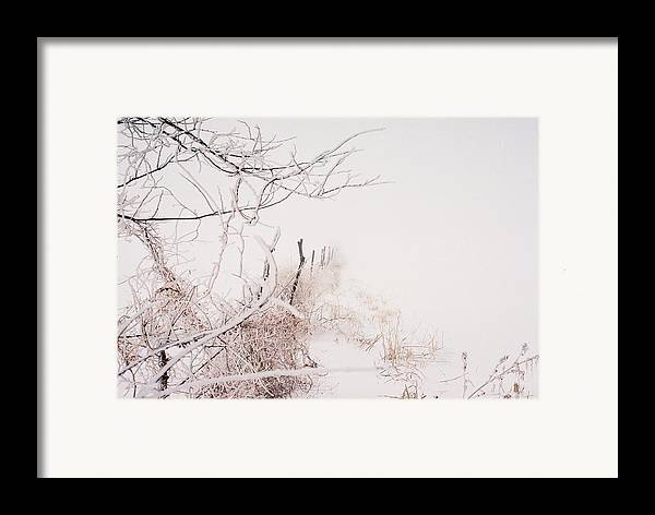 Snow Framed Print featuring the photograph Vanishing by Jennifer Trone