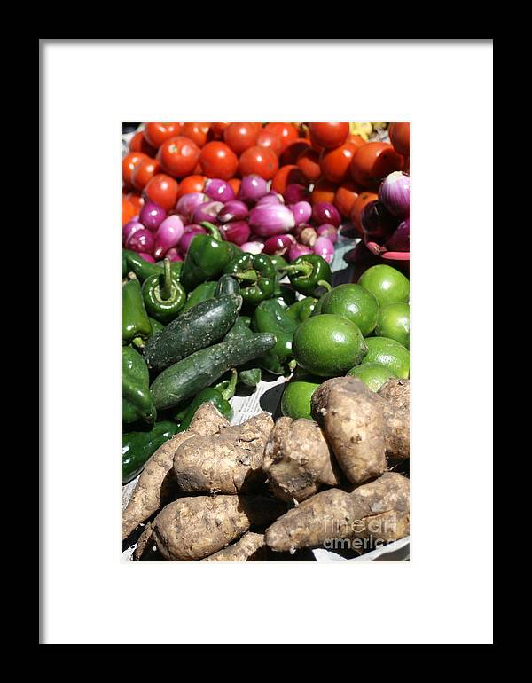 Veggies Framed Print featuring the photograph Veggies by Alisha Robertson