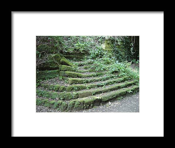 Stairs Framed Print featuring the photograph Venerable Ascent by D Turner