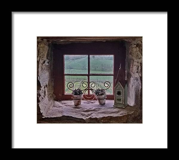 Photography By Suzanne Stout Framed Print featuring the photograph Ventana De Vina by Suzanne Stout