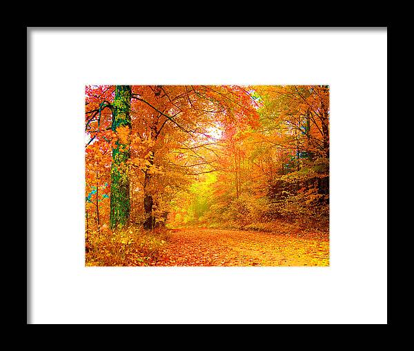 Landscape Framed Print featuring the photograph Vermont Autumn by Vicky Brago-Mitchell