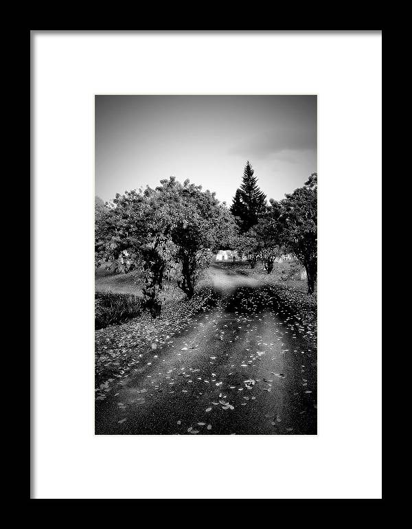 Cemetery Framed Print featuring the photograph Vermont Cemetery by Michael Simeone