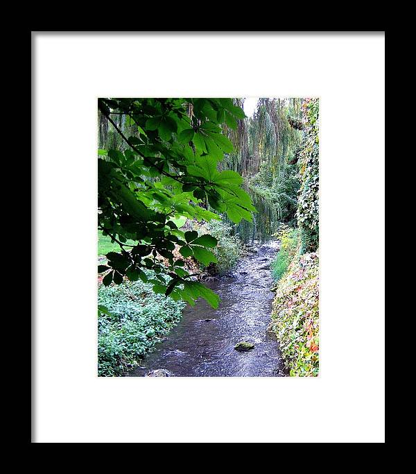Vernon Creek Framed Print featuring the photograph Vernon Creek by Will Borden