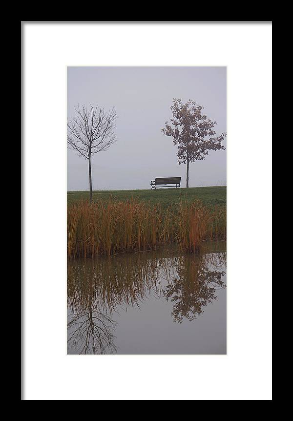 Trees Framed Print featuring the photograph Vertical Reflection by Brooke Bowdren