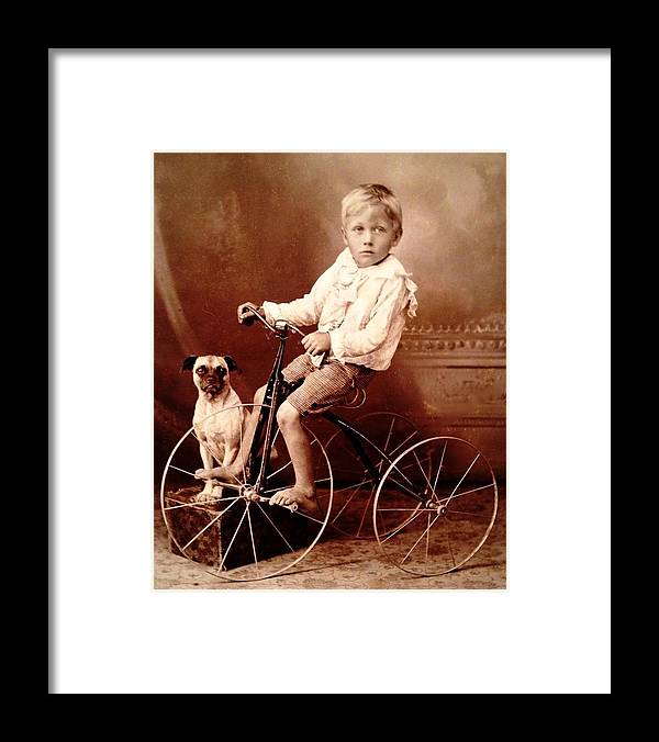 Victorian Boy With Tricycle Photograph Framed Print featuring the photograph Victorian Boy With Pug Dog And Tricycle Circa 1900 by Peter Gumaer Ogden
