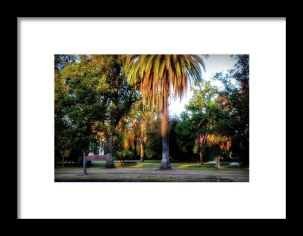 Victory Park Framed Print featuring the digital art Victory Park by Terry Davis