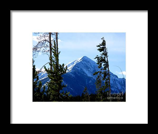 Mountain Framed Print featuring the photograph View From The Top by PJ Cloud